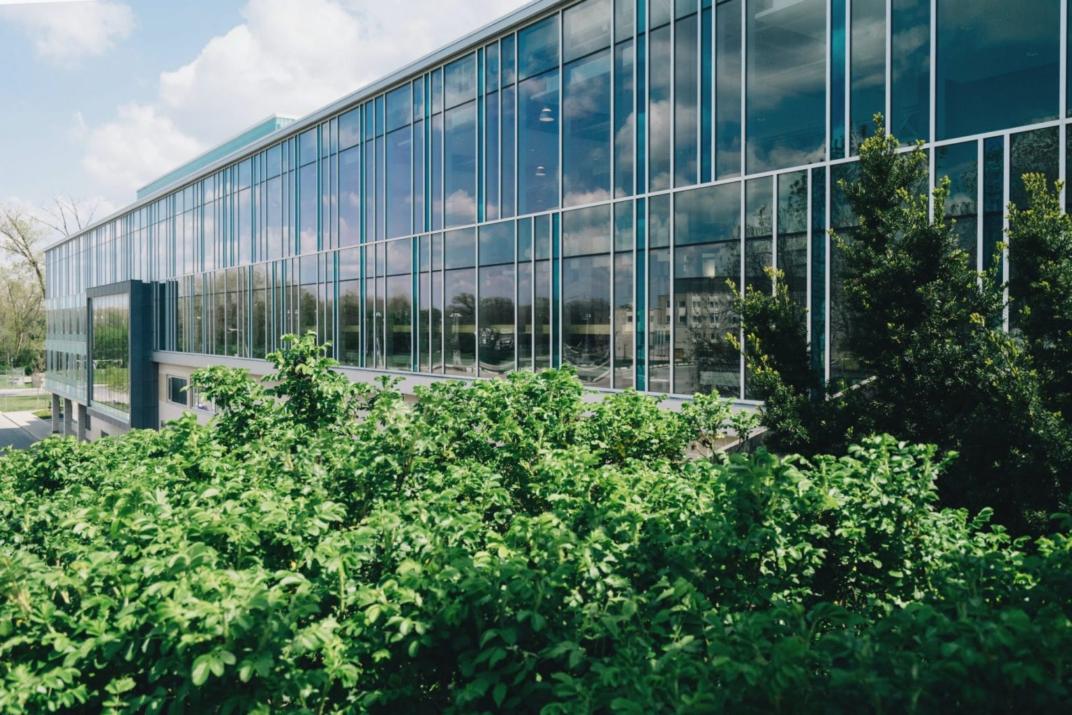 2021 Construction Trends Facilitated By Commercial Window Films - Commercial Window Film in Iowa City, Iowa